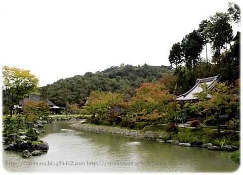 sayomaru19-306.jpg