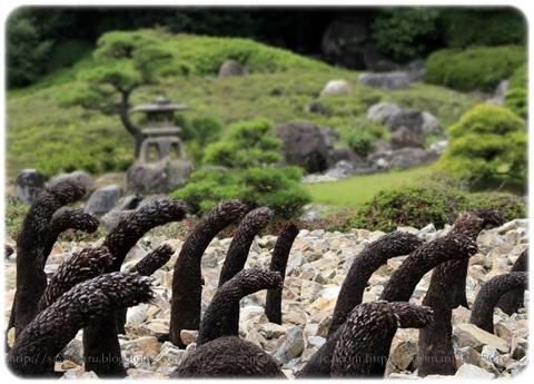 sayomaru19-310.jpg