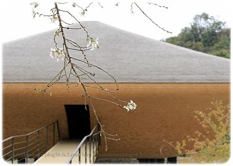 sayomaru19-314.jpg