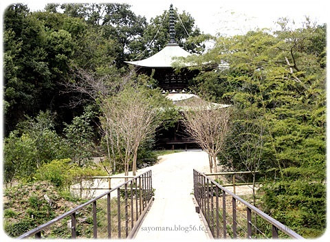 sayomaru19-318.jpg