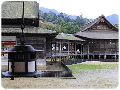sayomaru19-50.jpg