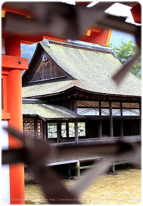 sayomaru19-68.jpg