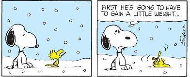 Snoopy Woodstock in Snow(2)