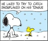Snoopy Woodstock in Snow(1)