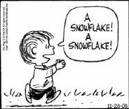 最初に降りた雪片_by C.シュルツ