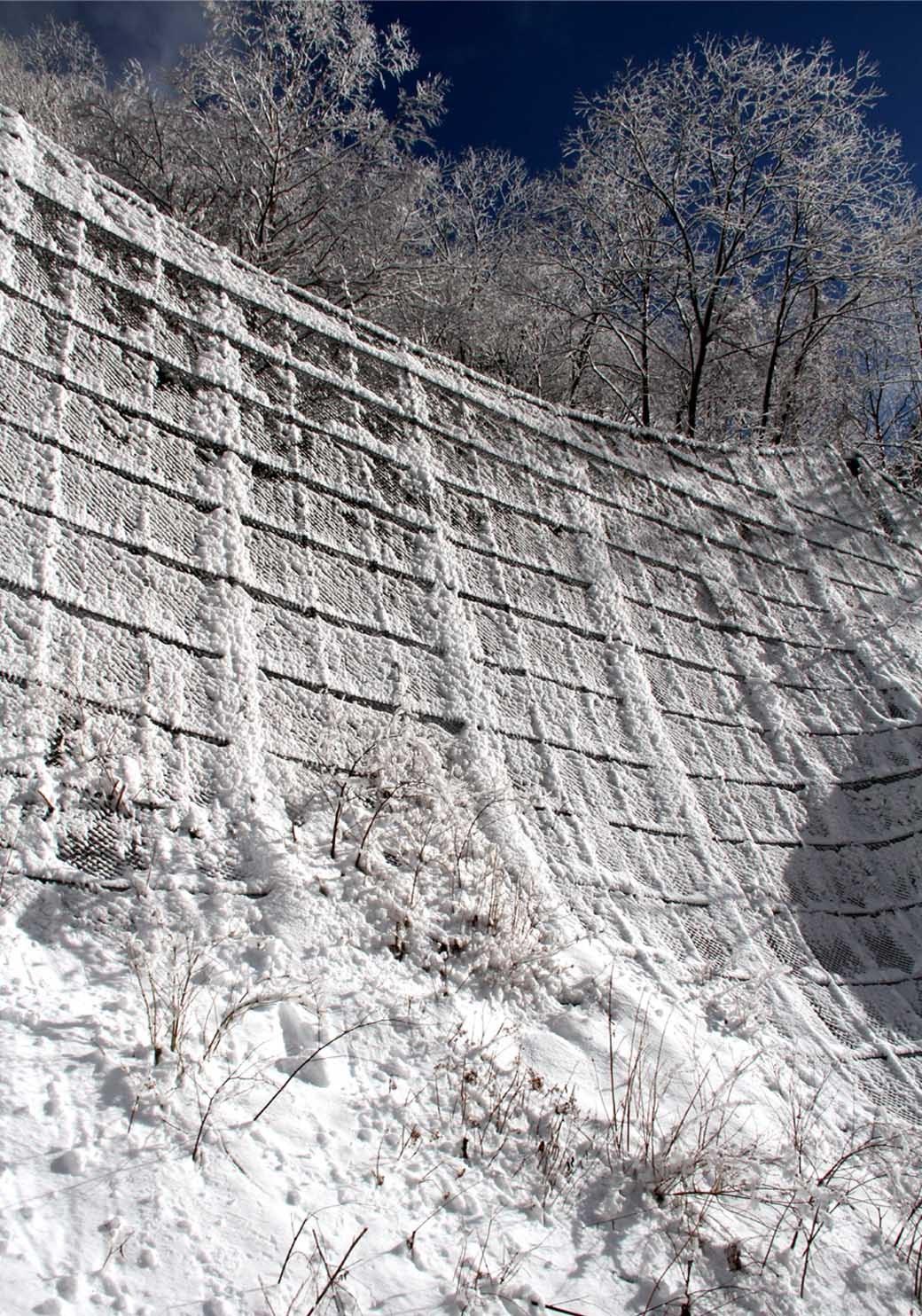 国際標準雪崩レスキュー (36)★