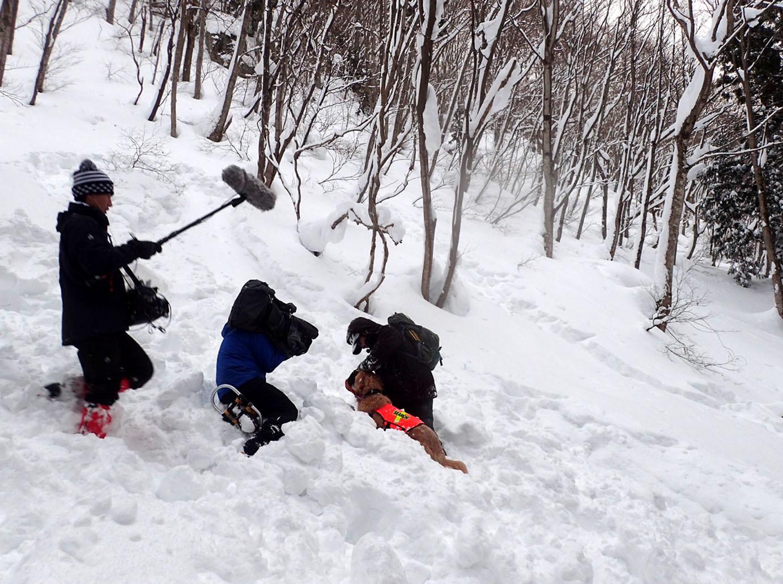 関東ブロック雪崩 初日(15)