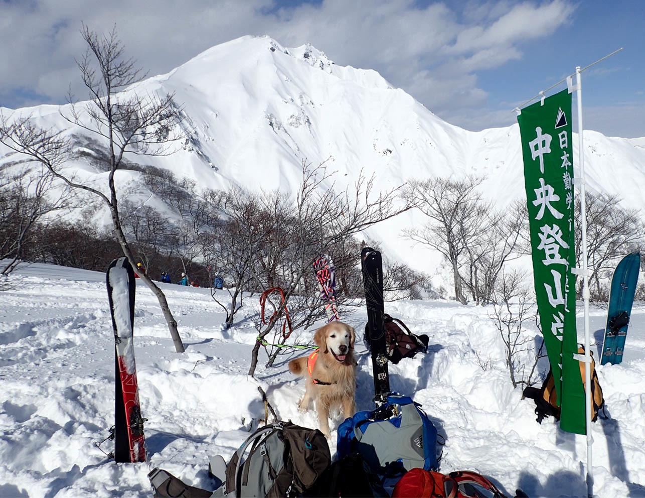関東ブロック雪崩 2日目(10)