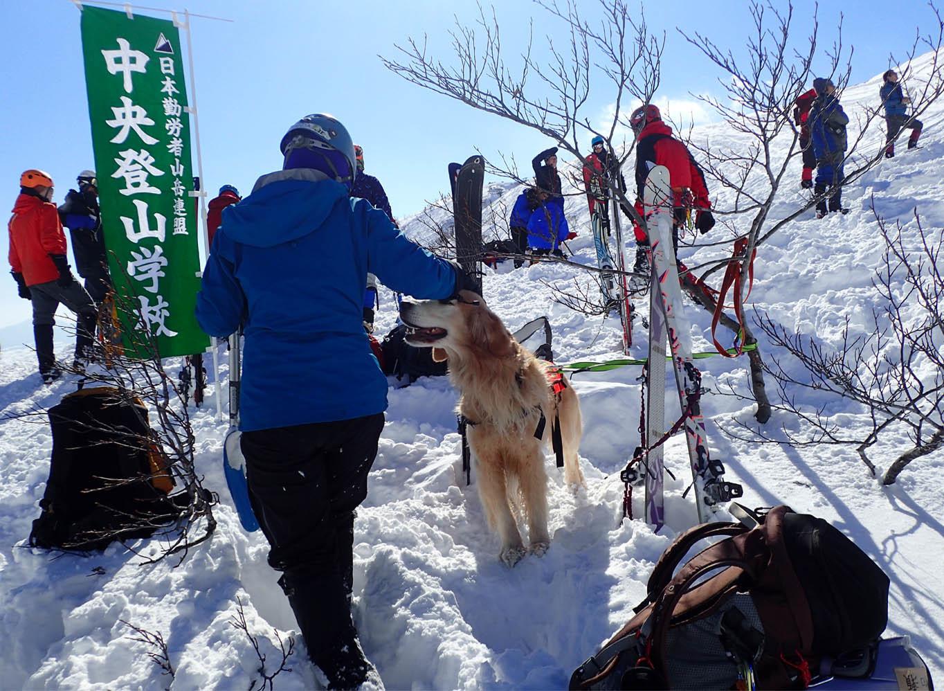 関東ブロック雪崩 2日目(19)