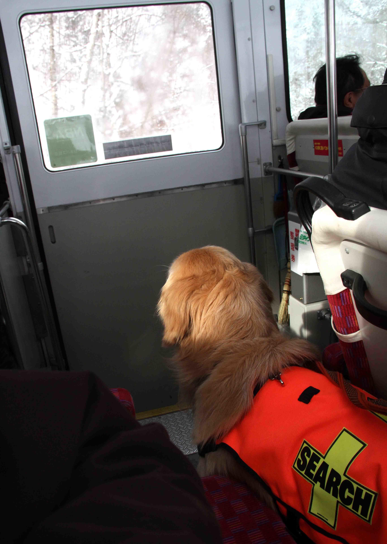 2月10日 バスとロープウェイ(2)