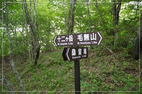 160703jyuni30.jpg