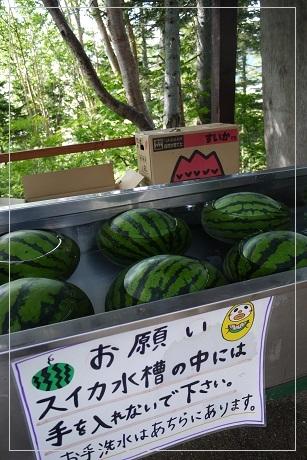 160710tsubakuro16.jpg