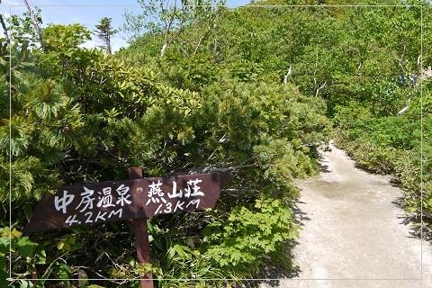 160710tsubakuro25.jpg