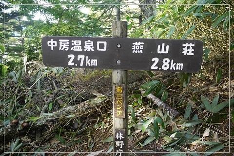 160710tsubakuro9.jpg