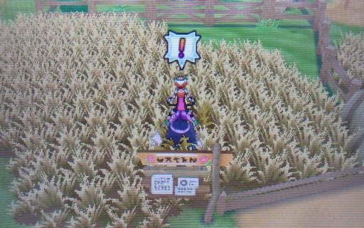 Pokemon36.png