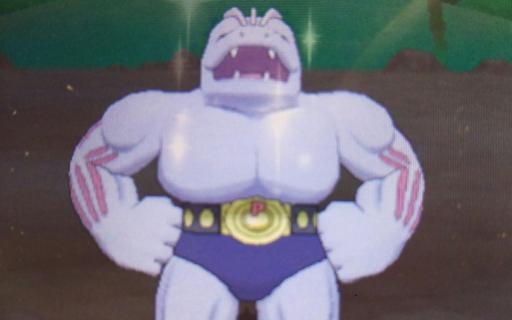 Pokemon73.png