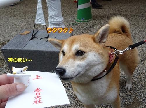 6奈良です