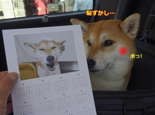 5カレンダー