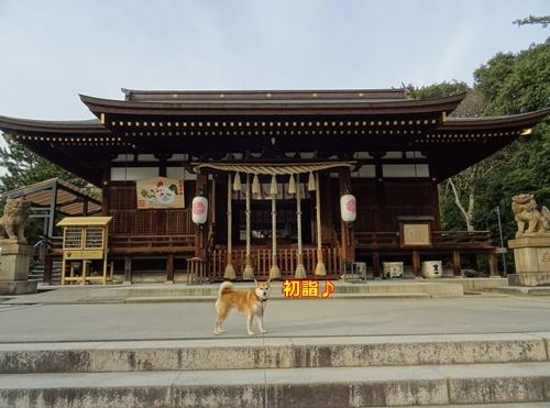 1弓弦羽神社