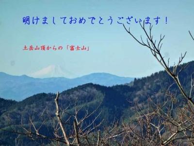 土岳山頂からの富士山