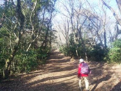 木漏れ日一ぱいの登山道