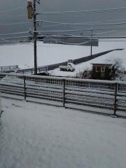 1/23積雪