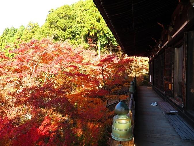 播州清水寺大講堂の紅葉