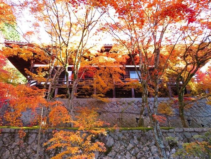 播州清水寺大講堂の紅葉2