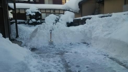 25124庭雪かき後
