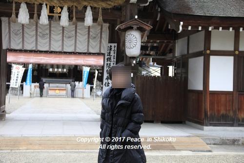 ijawa-1226-3978.jpg
