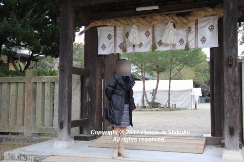 ijawa-1226-3984.jpg