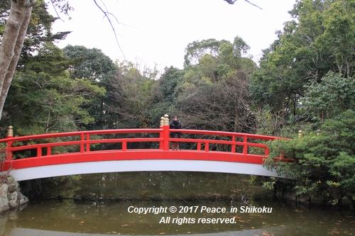 ijawa-1226-3993.jpg