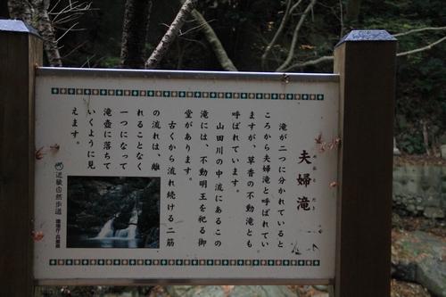 ijawa-1226-4004.jpg