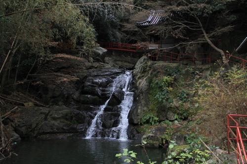 ijawa-1226-4023.jpg