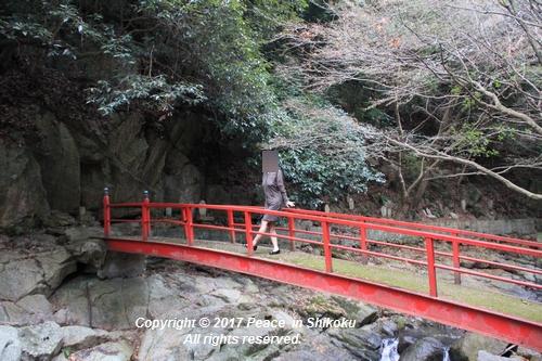 ijawa-1226-4051.jpg