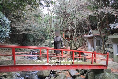 ijawa-1226-4100.jpg