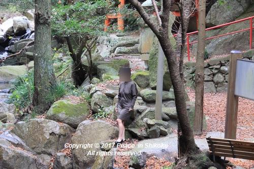 ijawa-1226-4108.jpg