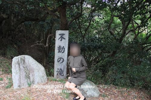 ijawa-1226-4135.jpg