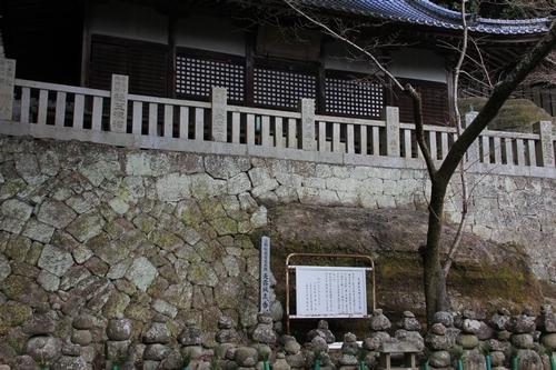 iyadani-0123-4584.jpg
