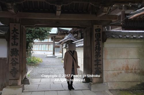 iyadani-0123-4590.jpg