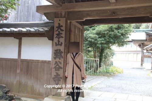 iyadani-0123-4593.jpg