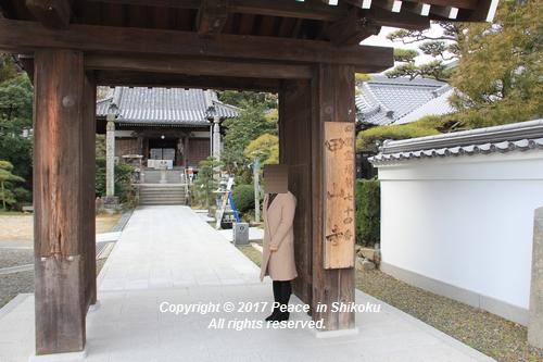 iyadani-0123-4599.jpg