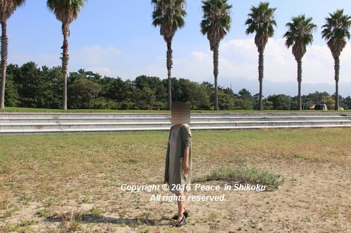 kosumosu-1017-1102a.jpg