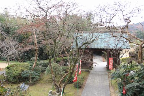 kouyou-1204-3264.jpg
