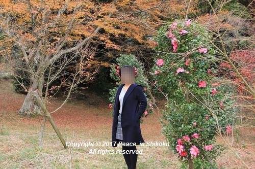kouyou-1204-3286.jpg