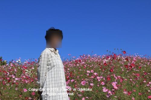 manou-1024-1407.jpg