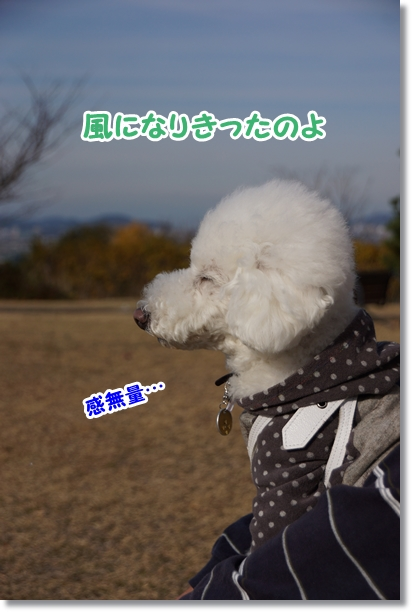 風になるオトコ4