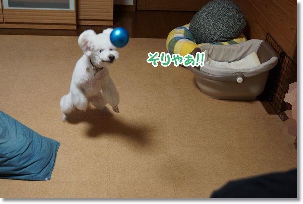 キャッチボール6