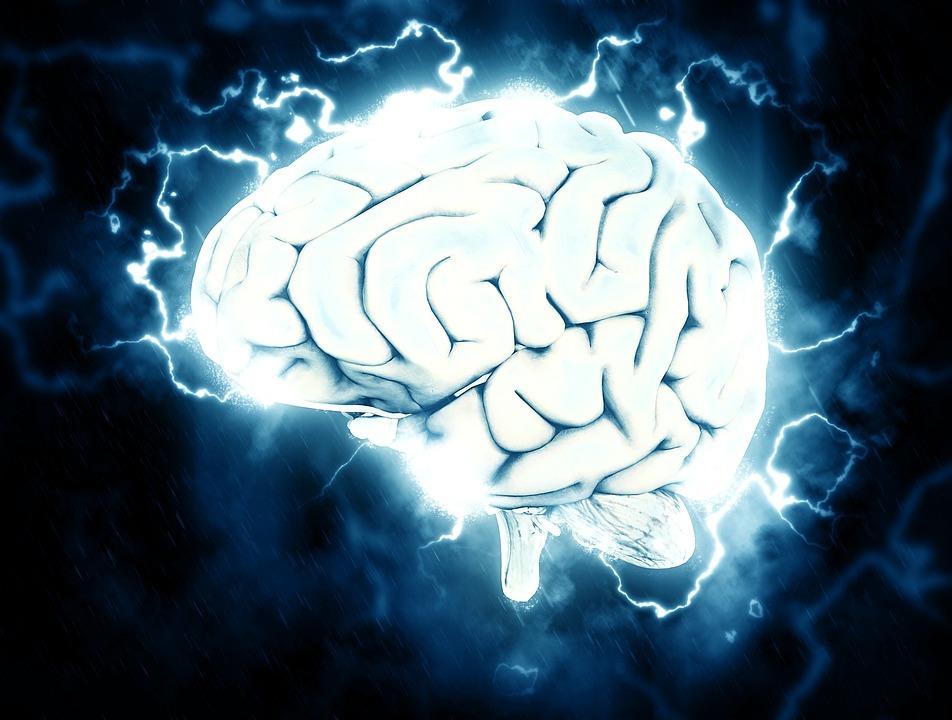 経営者向け 岩波先生の脳覚醒、会話の格闘術プログラムの予約方法 岩波英知先生のプロフィール