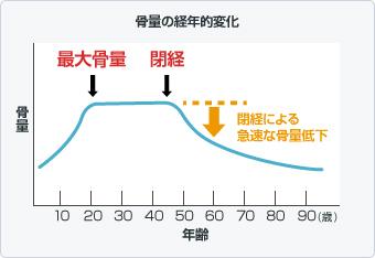 骨量の経年的変化